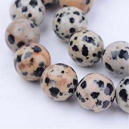 Natural Dalmatian Jasper Beads Strands US-G-Q462-10mm-30