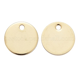 304 Stainless Steel Charms US-STAS-F174-06G
